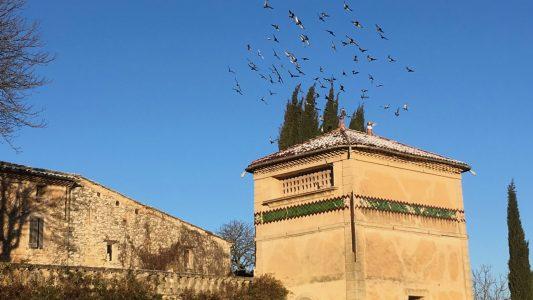 Pigeonnier - Colombier - Provence - Arnajon