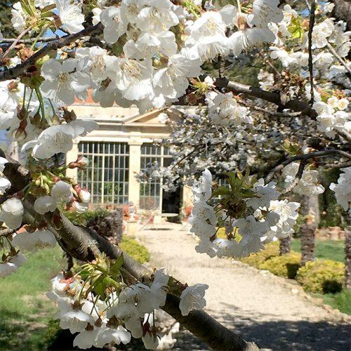 chateau-d'arnajon-jardins